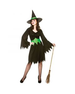 Wicked Costumes Female Wicked Witch