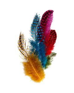 Creative Company Guinea Fowl Feathers Assorted Colours